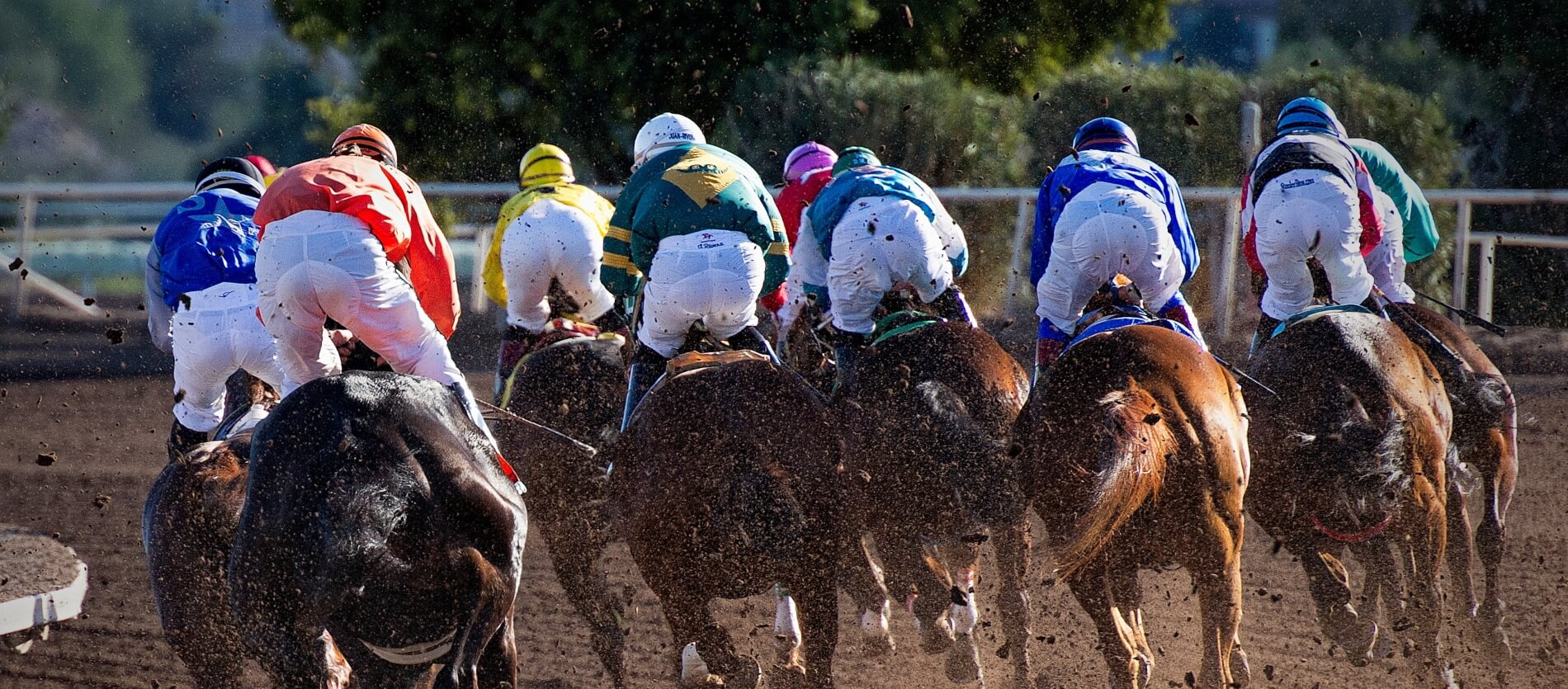 Rear view of a horse race.